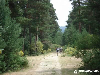 Valle del Lozoya - Camino de la Angostura;actividades para hacer en madrid senderismo la raña